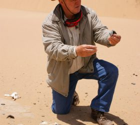 Namibia Guide with desert findings