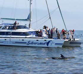 Namibia Ocean Tour